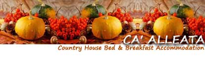 Ca' Alleata, Country House, Bed and Breakfast, Accomodation, restaurant, Venice, Caorle, San Stino di Livenza, Portogruaro